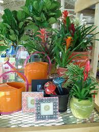 garden design garden design with great tropical plants indoor
