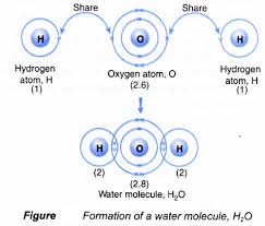 how is covalent bond is formed