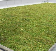 Dan Perkins Roofing by News Liveroof Hybrid Green Roofs