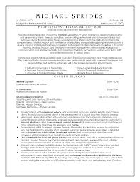 Ceo Resume Example Executive Resume Samples Australia Executive Format Resumes By