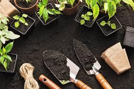 factors for making a vegetable garden plan backyard riches