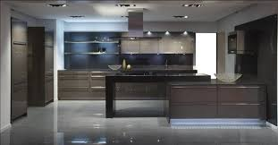 Lacquered Kitchen Cabinets Custom Modern Kitchen Cabinets Ideas Frosted Glass Perfect For
