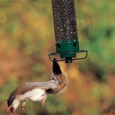 yankee flipper bird feeder yf droll yankees