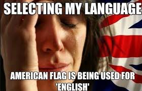 Proper English Meme - have two language options american english and english discuss