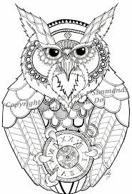 1089 best birds to colour images on pinterest owls