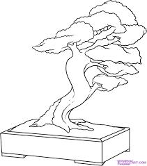 how to draw a bonsai tree step