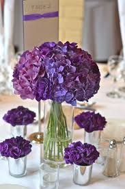 i am looking purple hydrangeas to buy for a reasonable price