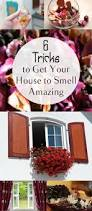 6045 best pin it board images on pinterest life tips popular