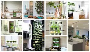 Kitchen Herb by Kitchen Herb Gardens That Will Make Cooking Wonderful