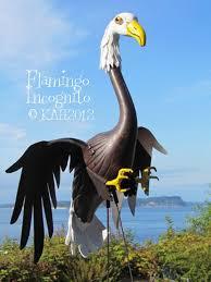 best 25 yard flamingos ideas on pinterest plastic flamingos