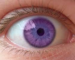 purple eye color purple eye by aenia on deviantart
