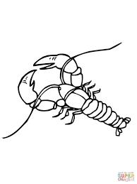 coloring crawfish coloring page