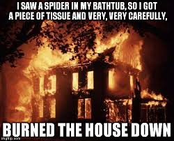 I Saw A Spider Meme - burning house imgflip