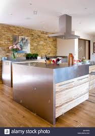 stainless steel island and wood veneer unit in large modern