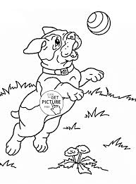 cute puppy playing coloring page for kids animal coloring pages