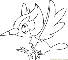 pikipek pokemon sun and moon coloring page free pokémon sun and