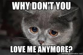 Love Me Meme - why dont you love me meme more info