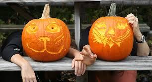 New York Botanical Garden Pumpkin Carving by Weekend Planner New York City U0027s Best Events October 21 23