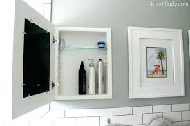 Bathroom Mirrors With Storage Ideas Storage Mirror Plantbasedsolutions Co