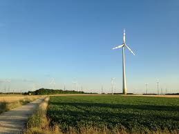 transwind institut für wald umwelt und ressourcenpolitik