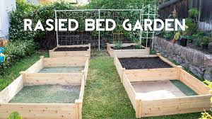 how to start a vegetable garden for beginners raised garden beds how to start gardening with raised beds youtube