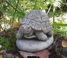 tortoises turtles garden ornaments ebay