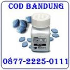 jual obat kuat viagra usa asli murah 087722250111 cod bandung resto