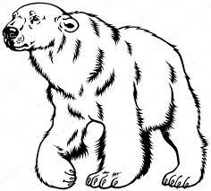 polar bear black white u2014 stock vector insima 43030715