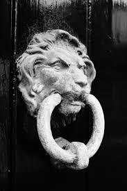 decor u0026 tips dark wooden glossy door design with white head lion