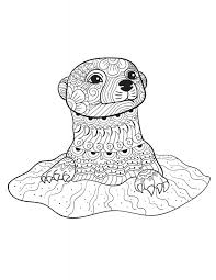 free printable otter coloring pages cute kids harry potter easy