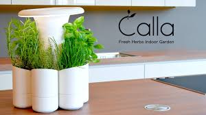 calla fresh herbs indoor garden by 4senses u2014 kickstarter
