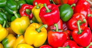comment cuisiner les poivrons rouges comment cuire des poivrons