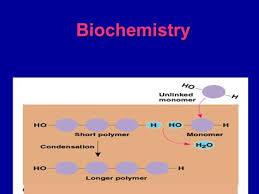 biochemistry chapter ppt video online download