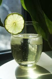 vodka soda drink edition vodka gimlet u2013 give me meatloaf