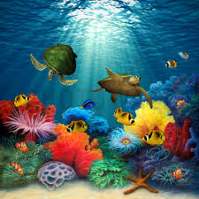 coral sea canvas print canvas art photowall arte painted by david miller coral sea wall mural from murals your way will add a distinctive touch to any room