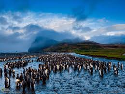 100 best national geographic photography 2015 100 most famous