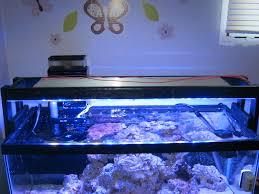 stunner led aquarium light strips comprehensive diy led project list page 9 lighting forum