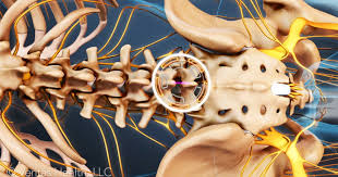 Back Pain When Getting Out Of Chair What Is Your Lower Back Pain Telling You