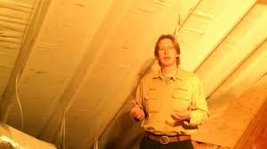 mold in attic how to prevent mold in attic diy youtube