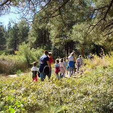 Arboretum by Tours And Activities The Arboretum At Flagstaff