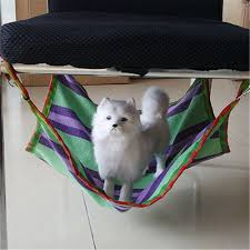Cat Under Chair Make A Cat Hammock With Hardly Any Materials