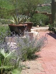 artisan desert retreat southwestern landscape phoenix by