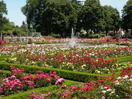 Leach Botanical Garden by 8 Natural Hidden Gems In Oregon