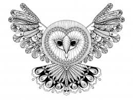 Owl Coloring Pages For Adults Justcolor Coloring Pages Owl