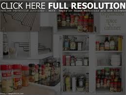cabinet kitchen cupboard organizing ideas kitchen cabinet