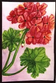 kamat u0027s potpourri floral paintings of mukta venkatesh