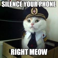 Kitty Meme Generator - meme creator sailor cat meme generator at memecreator org