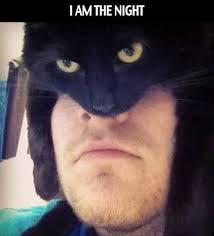 Batman Face Meme - am the night batman cat meme