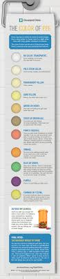 color or colour what the color of your urine says about you health essentials from