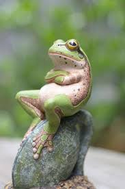 Cute No Meme - 10 funniest unimpressed memes unimpressed meme frogs animal